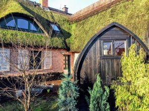 Garden sauna igloo 2