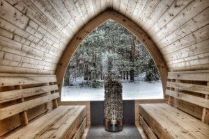 Outdoor sauna igloo design with full wall window for sale 12